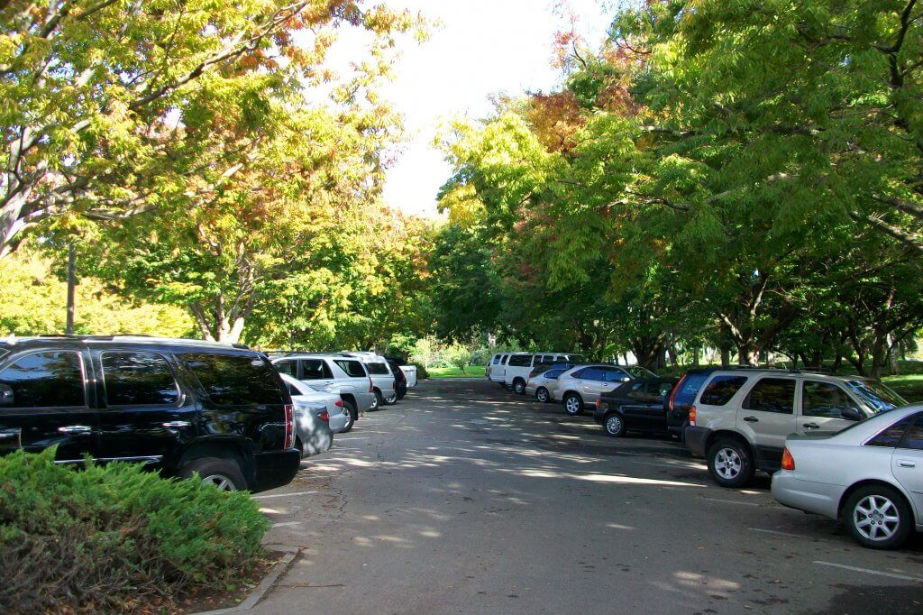 Cars parked in cool shade