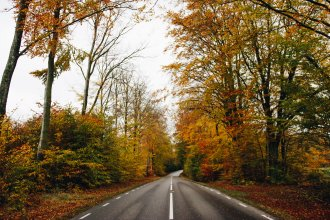 Autumn Road Trip